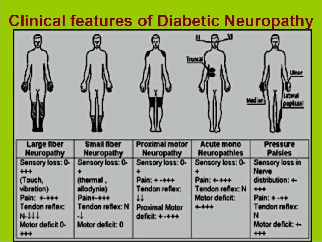 Classification Of Diabetic Neuropathy Medical Pdf