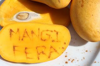 Mangifera - Mango