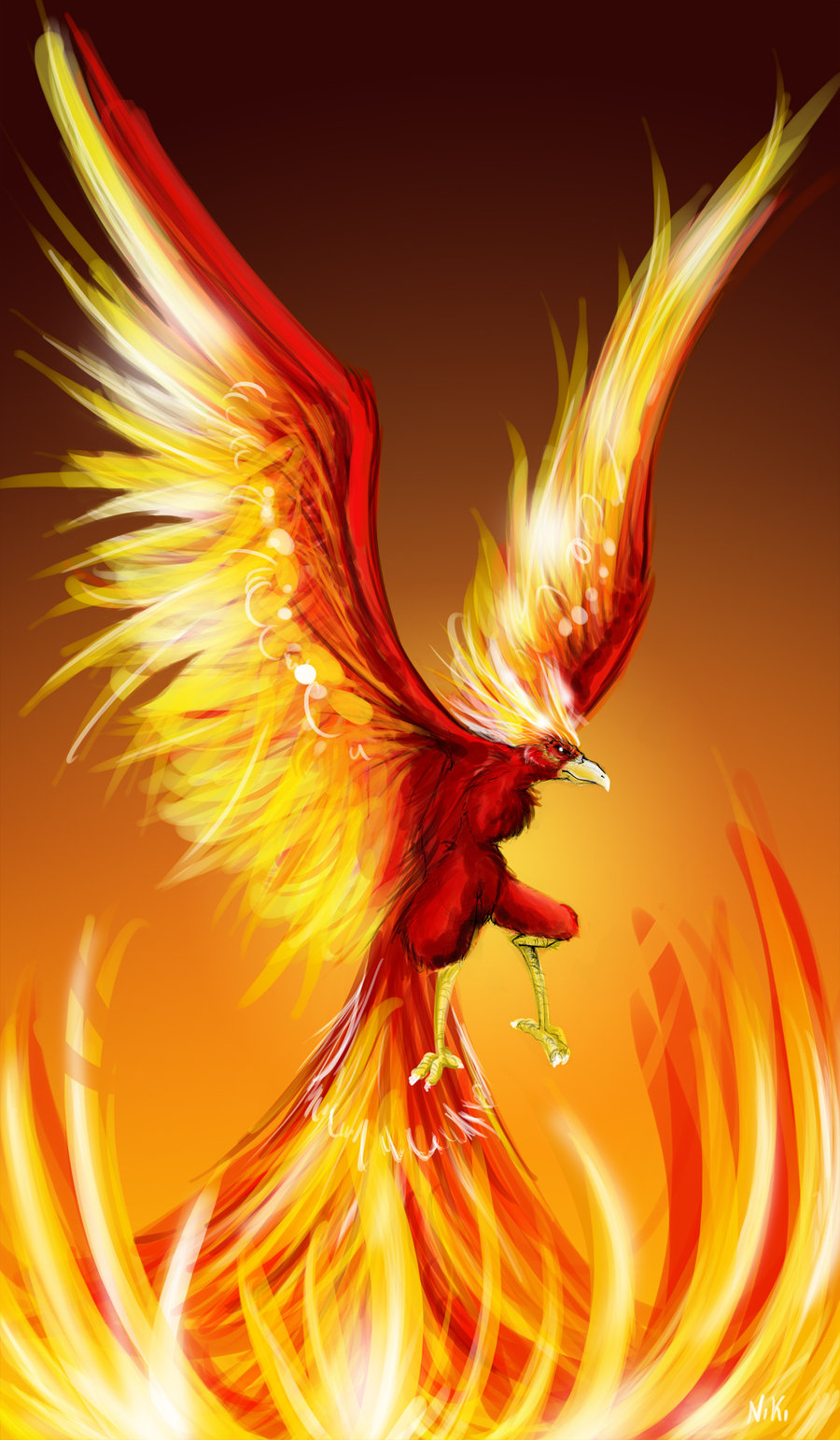 Phoenix in hd images and wallpapers - Fenix bird hd images ...
