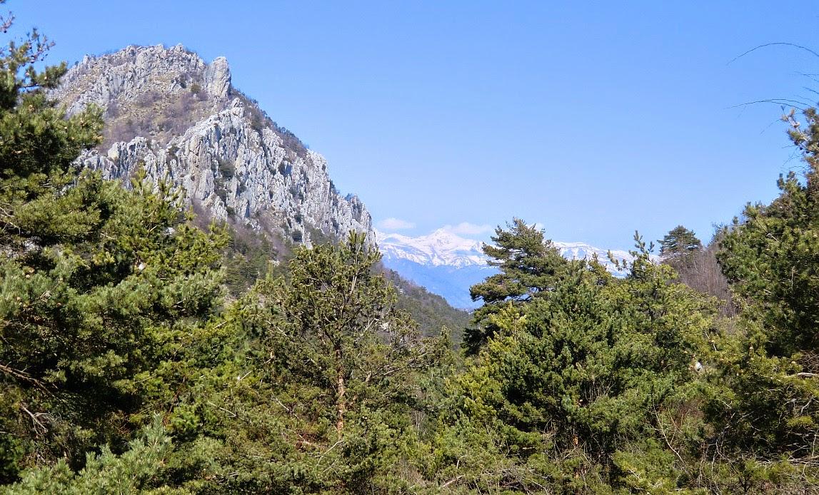 Mercantour summits seen from Colla Bassa