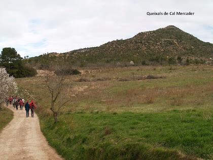 Vista vers el nord-oest dels Queixals de Cal Mercader des del Camí de les Casetes d'en Vives