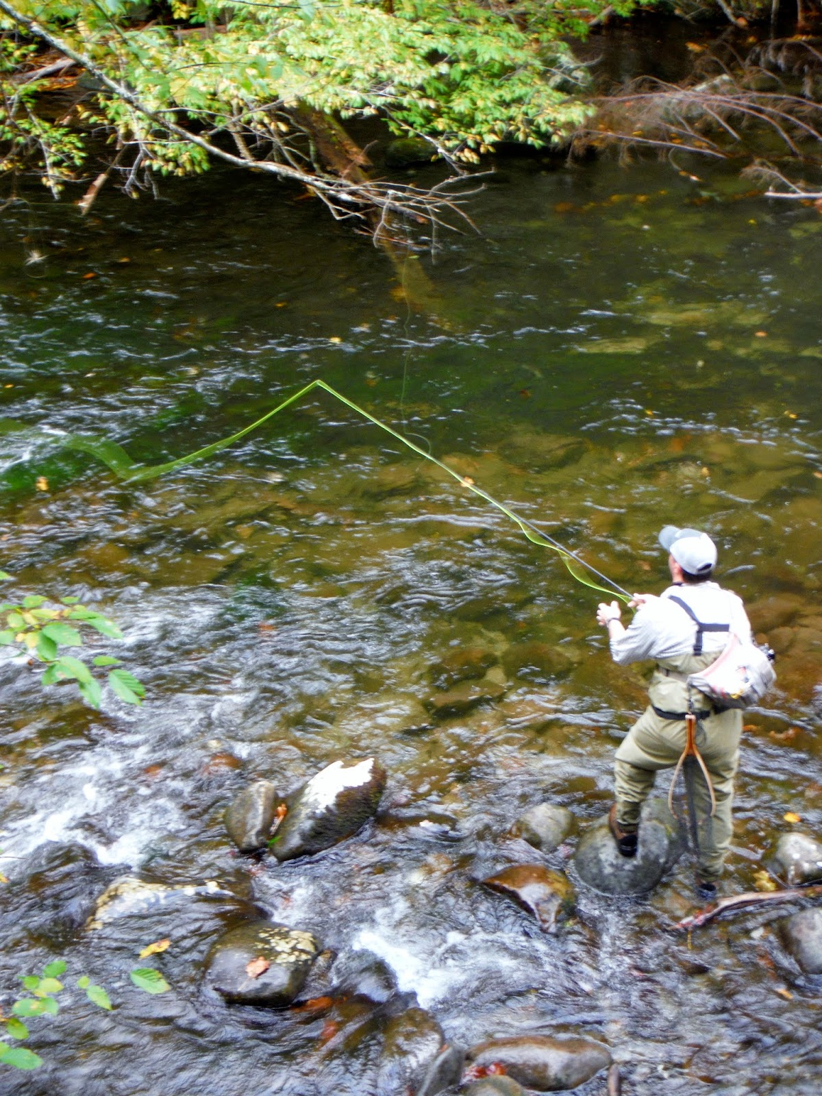 Tennessee fly fishing for Tennessee trout fishing