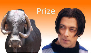 salman khan hairstyle like buffalo funny 2013 wallpaper