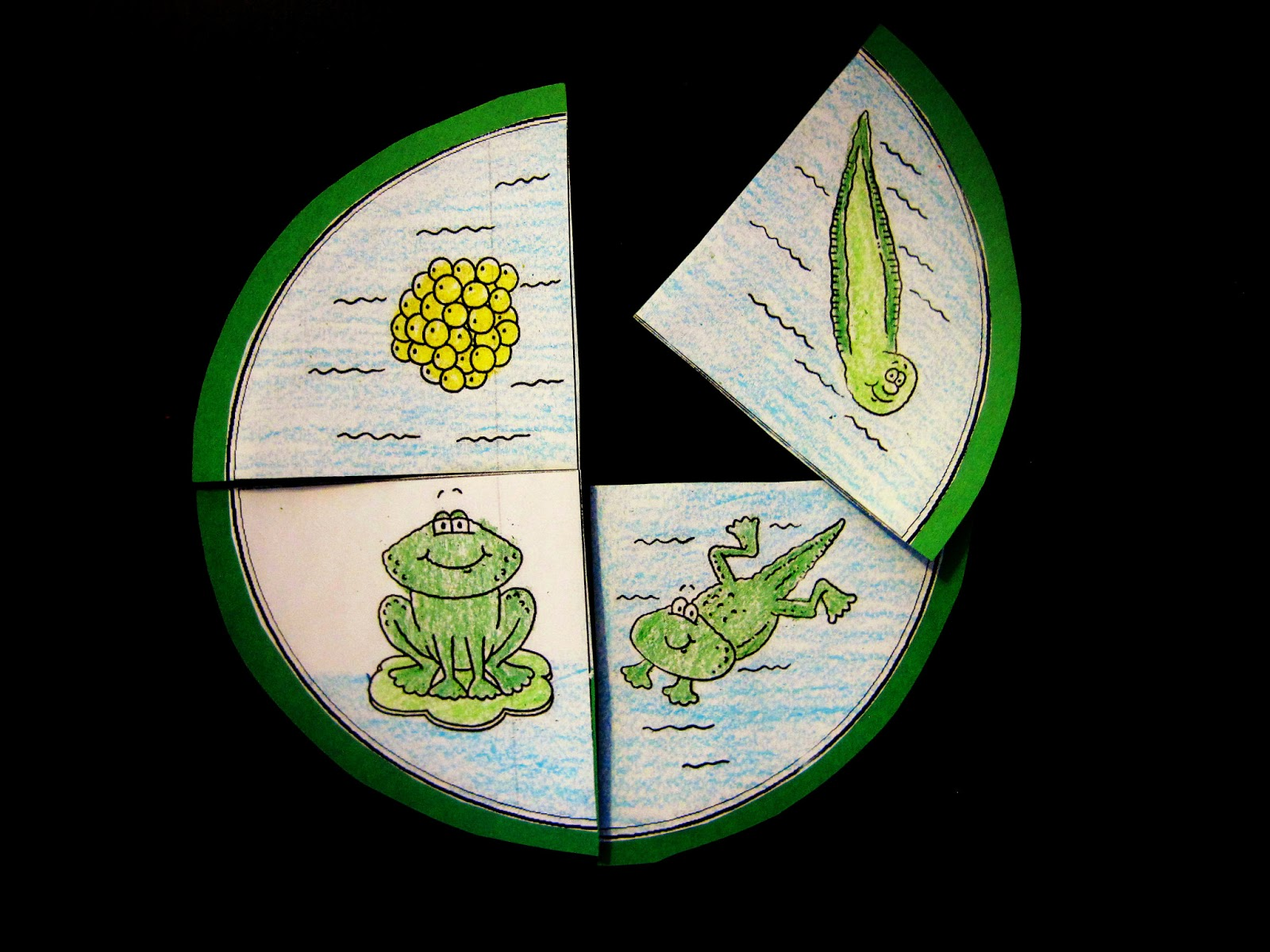 Literacy- Looking for letter Aa under corn. I use this activity for almost every letter. I write the letter we are doing on a paper plates and cover it with ... & Preschool Ideas by Alicia : Wild Animalu0027s- Day 7