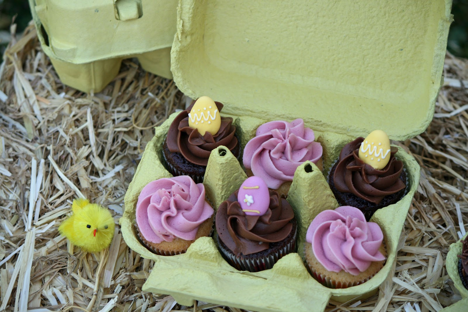 Lauralovescakes egg box mini cupcakes these are also my first entry into the april teatime treats challenge with the theme being easterobviously teatime treats is hosted by lavender and negle Images