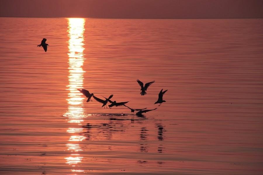 تعرف علي بحيرة إزنيق Iznik بالصور