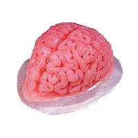 Brain Jello1