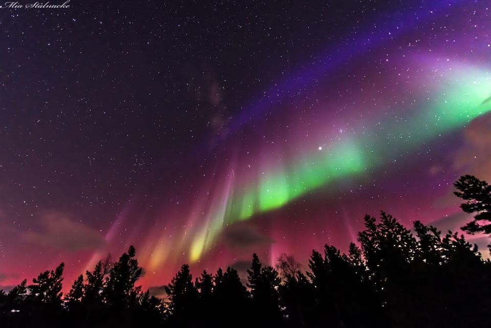 Lá cờ đầy màu sắc trên bầu trời Thụy Điển. Tác giả hình : Mia Stålnacke.