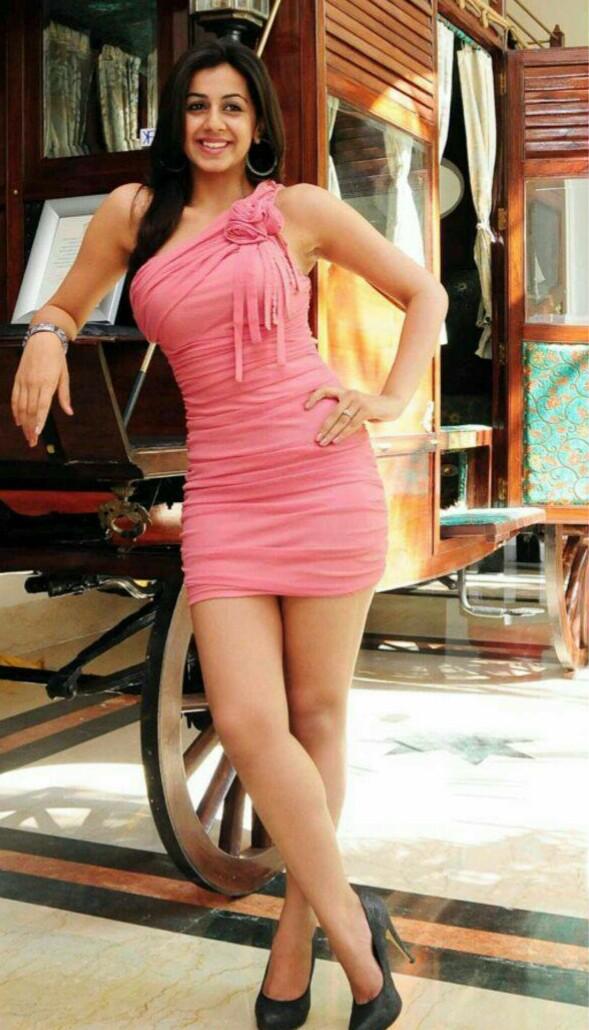 Nikki Galrani latest hot photos « Mallufun.com