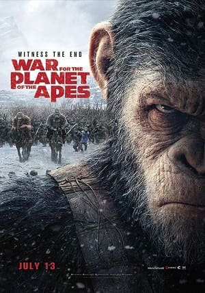 Planeta dos Macacos - A Guerra Filmes Torrent Download capa