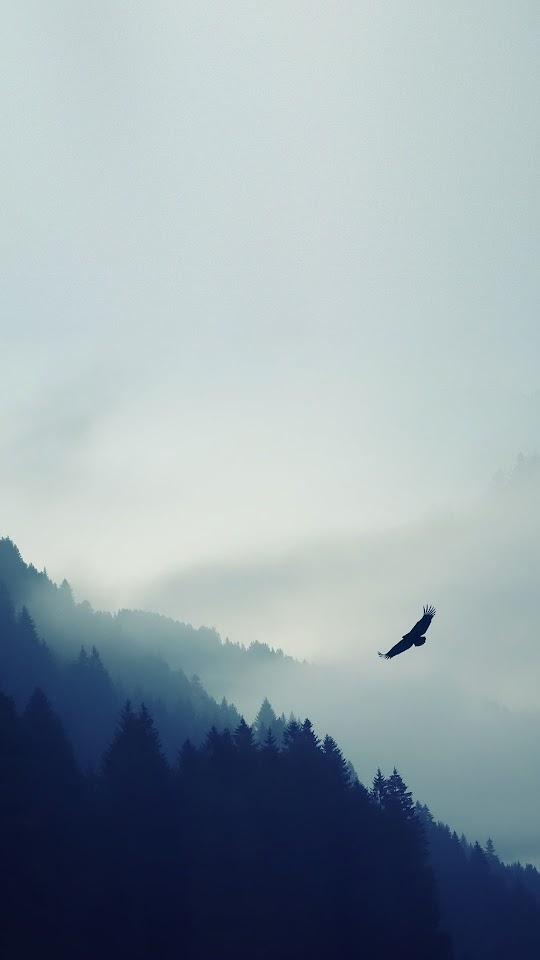 Flying Eagle Blue Fog Sky Forest  Galaxy Note HD Wallpaper