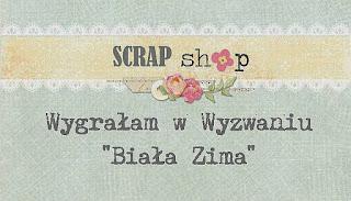 wyróżnienie przez Scrap Shop