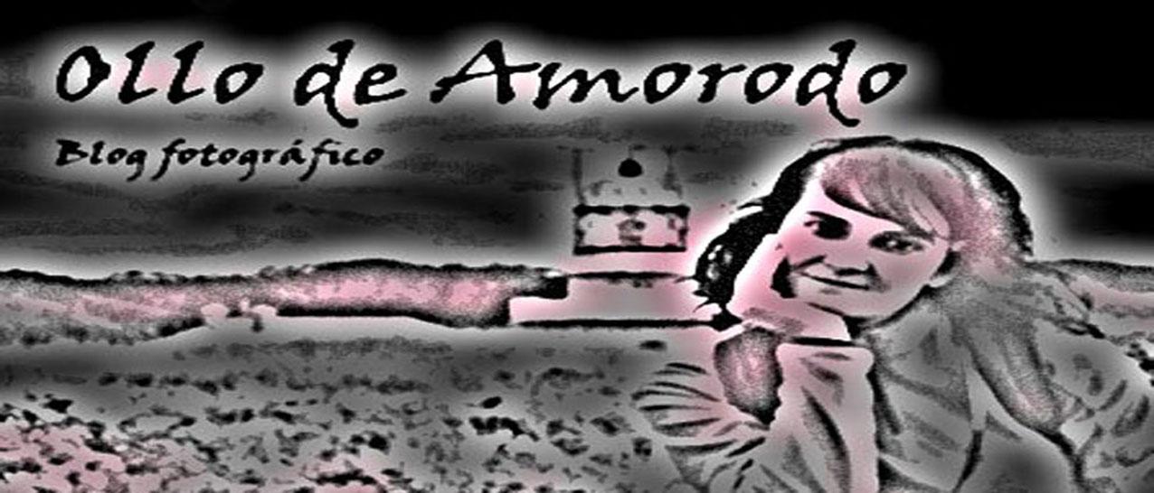 Ollo de Amorodo
