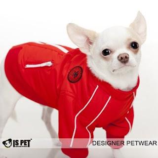 Chihuahua Reversible Jacket