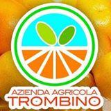 AZIENDA AGRICOLA TROMBINO