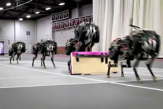 Robot-cheeta kan hordelopen