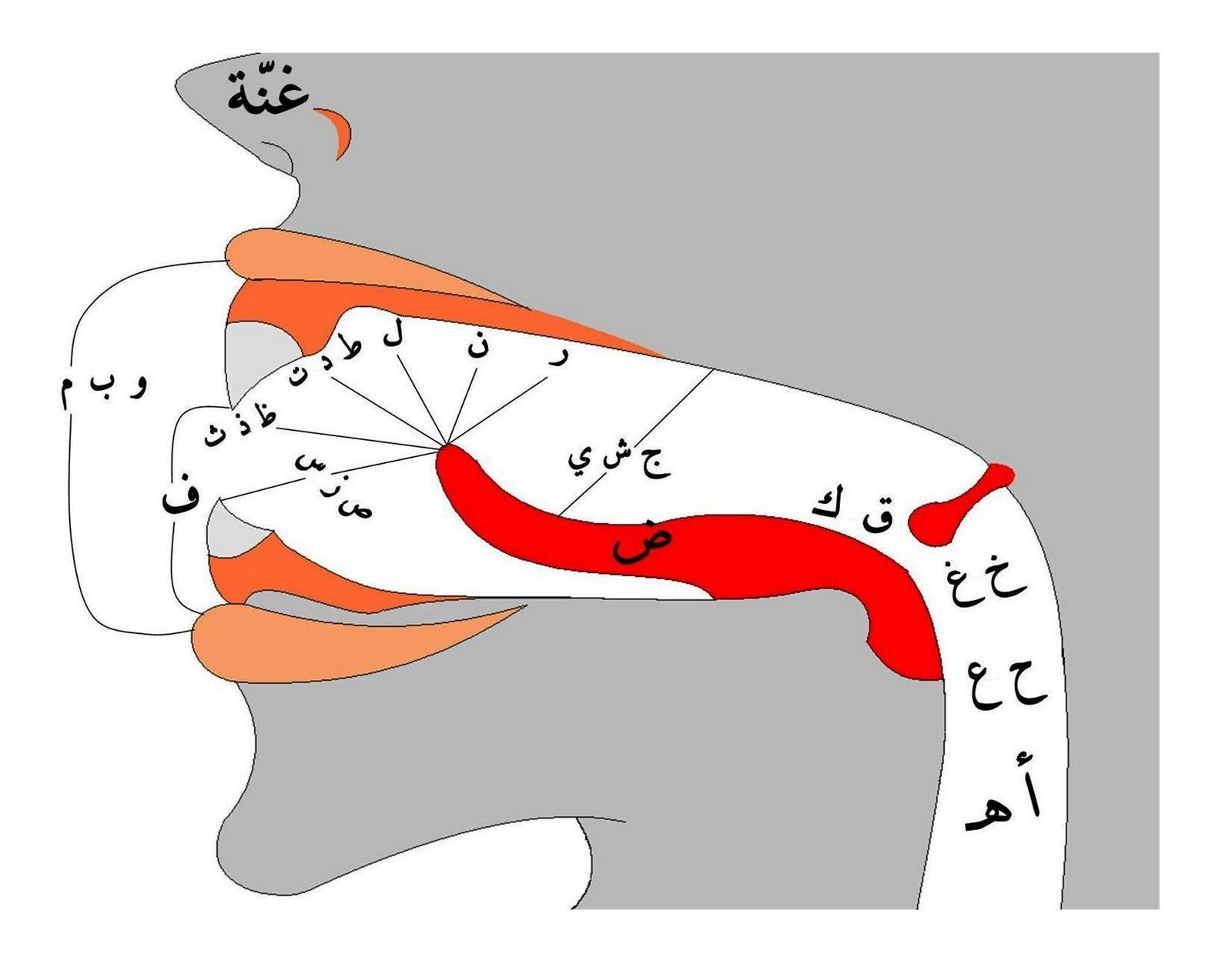 Makhraj Huruf Hijaiyah