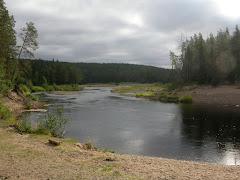 FINLANDE - Circuit de l'ours