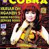 New Cobra Mp3 The Best Mona Ochan - Separo Rogo  2014