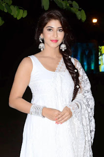 Sonarika Stills At Jadoogadu movie Audio Launch   (6).jpg