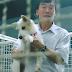 #OMG: Chinês vem ao brasil para comprar cachorros que serão consumidos na China