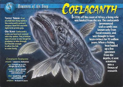 Ikan Raja Laut Ikan Purba