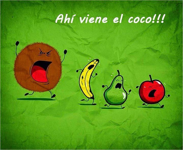 ahí viene el coco frutas