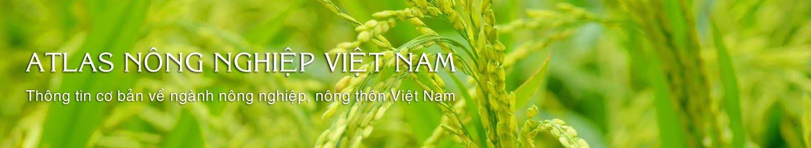 Atlas Việt Nam
