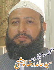 Syed Hamid Raza