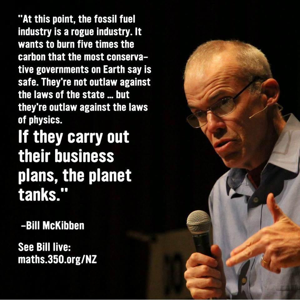 bill mckibben worried us essay Introduction bill mckibben in his essay the christian paradox:how a faithful nation gets jesus wrong describes some tendencies in the life of american christians.
