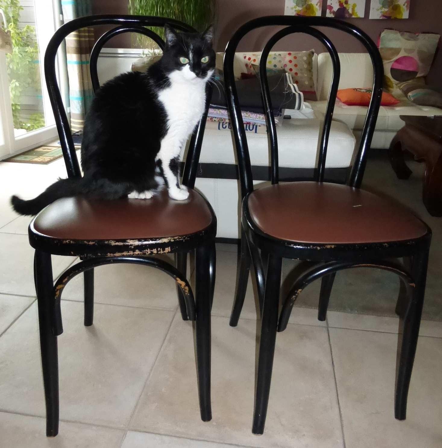 Bulles de cerises retaper une chaise en bois et son assise for Restaurer une chaise en bois