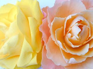 http://www.szivarvanydesign.hu/2012/01/059-lady-portia.html