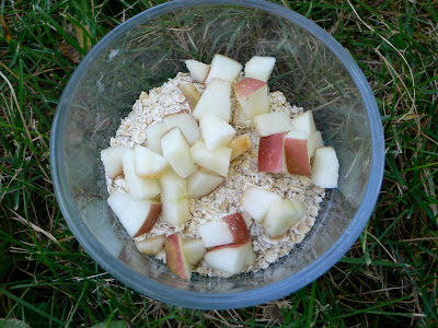 Worm Food: NOT meat: We added oatmeal and apples: STEMmom.org