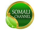 Somali Channel TV
