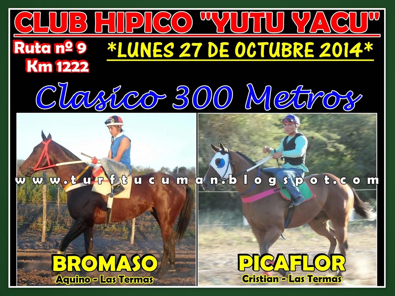 BROMASO VS PICAFLOR