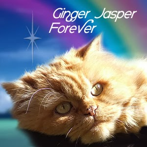 Forever, Ginger Jasper