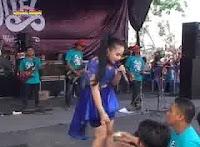 Neo Sari - Sambalado (New Pallapa Live Respanel Season 4 2015)