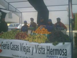 feira Santiago-chile