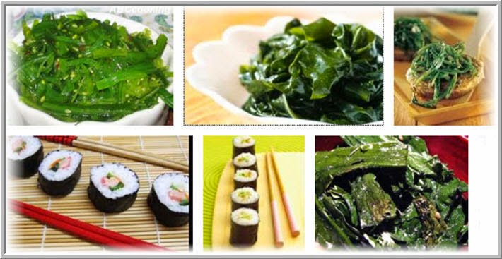 Les algues l gumes de mer s t r a v a g a n z a - Alghe in cucina ...
