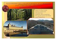 Senderismo: Silla Felipe II-Bosque de la Herrería
