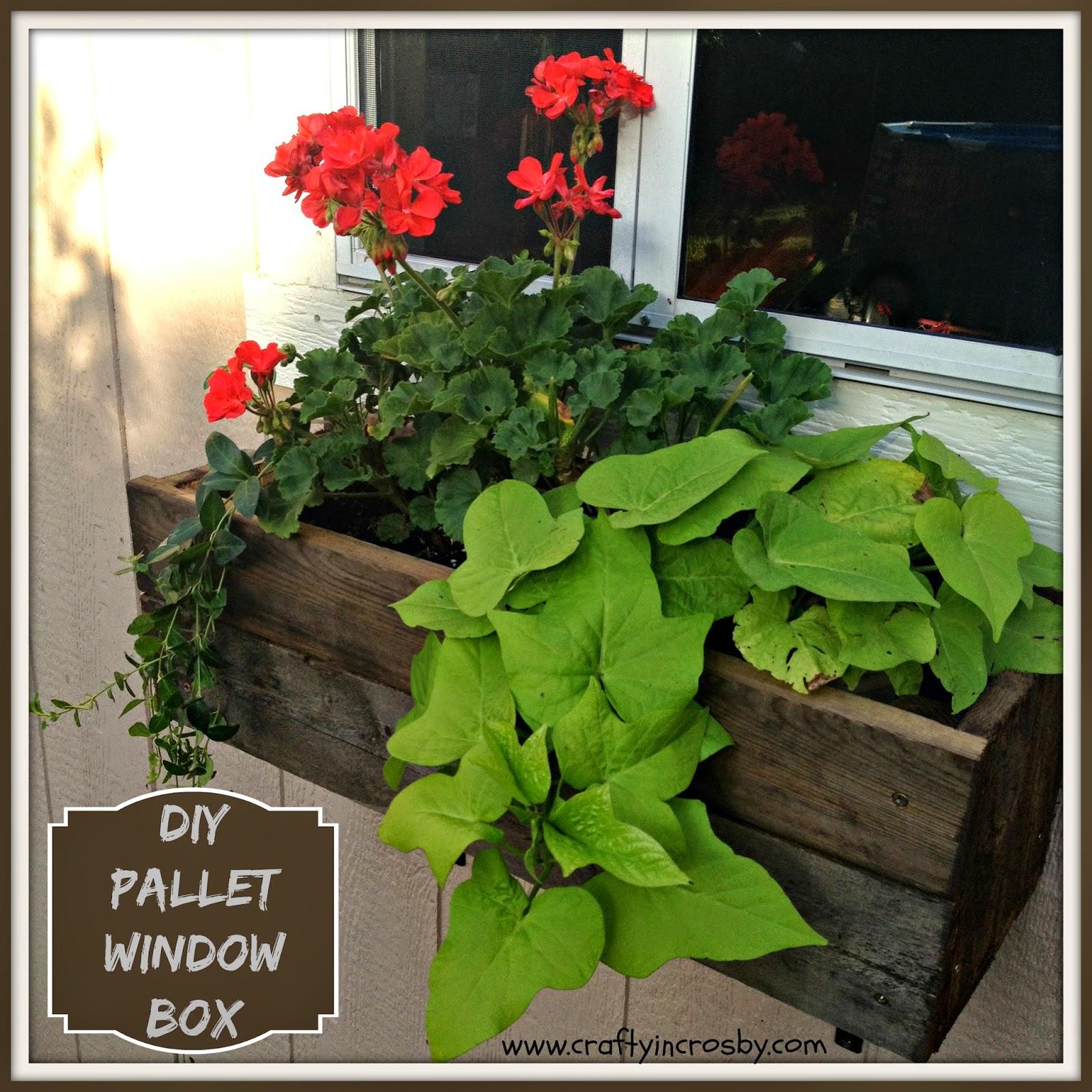 diy, Tuffshed, garden shed, window box, pallet diy