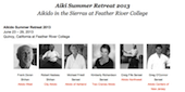 Aiki Summer Retreat 2013