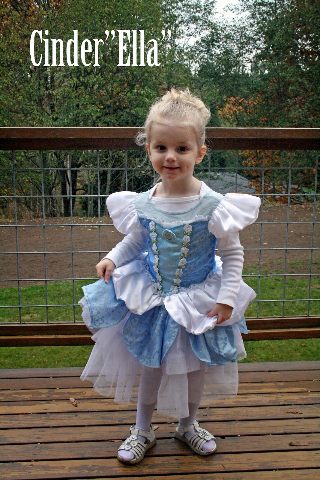 my 3 year old as cinderella her name is ella