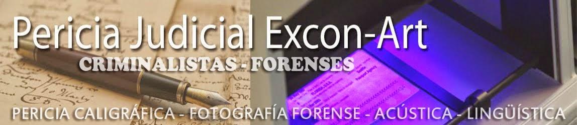Excon-Art Perito Judicial