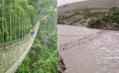 Kakum National Park Canopy Walk – Scared of Heights?
