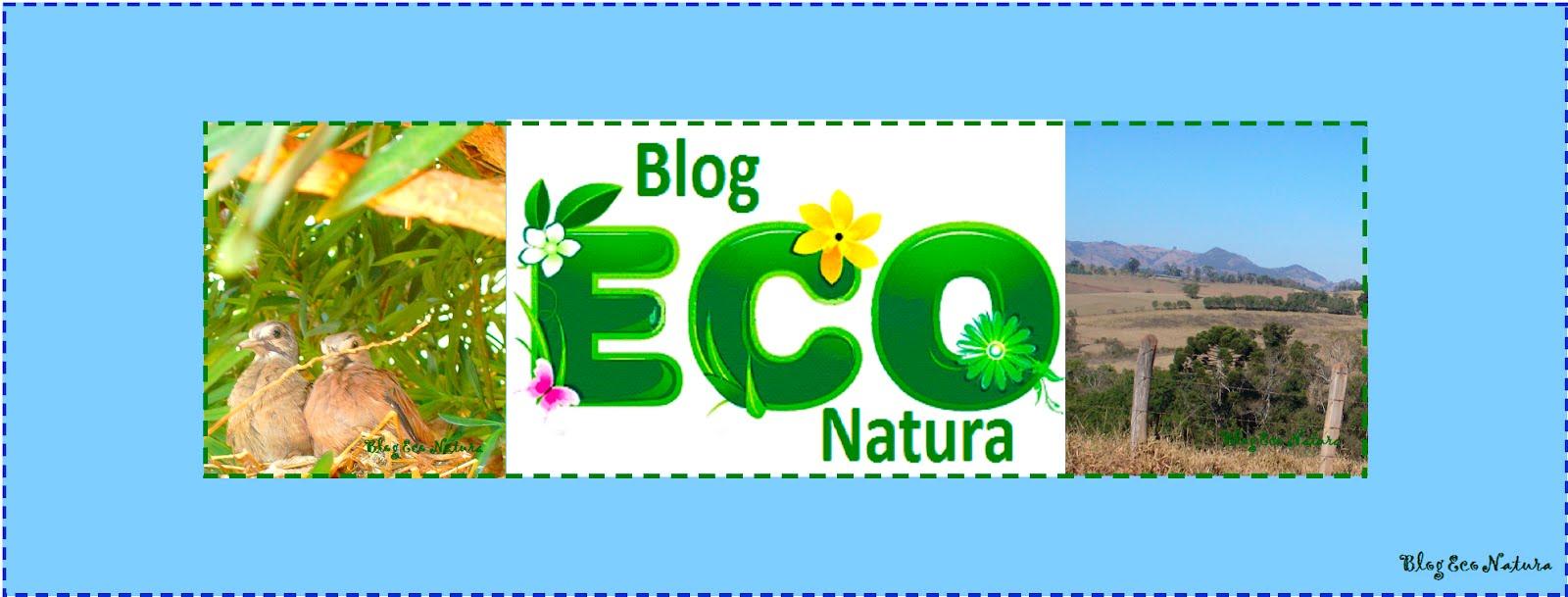 Blog Eco Natura
