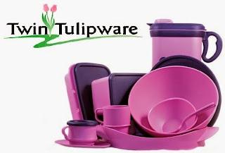 Inilah Kelebihan Peluang Bisnis Rumahan Twin Tulipware