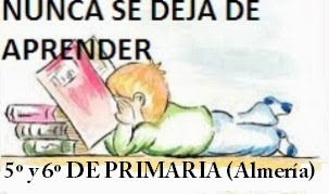 NUNCA SE DEJA DE APRENDER