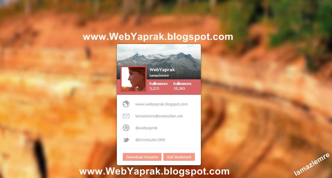Profil Kartı (css,html)