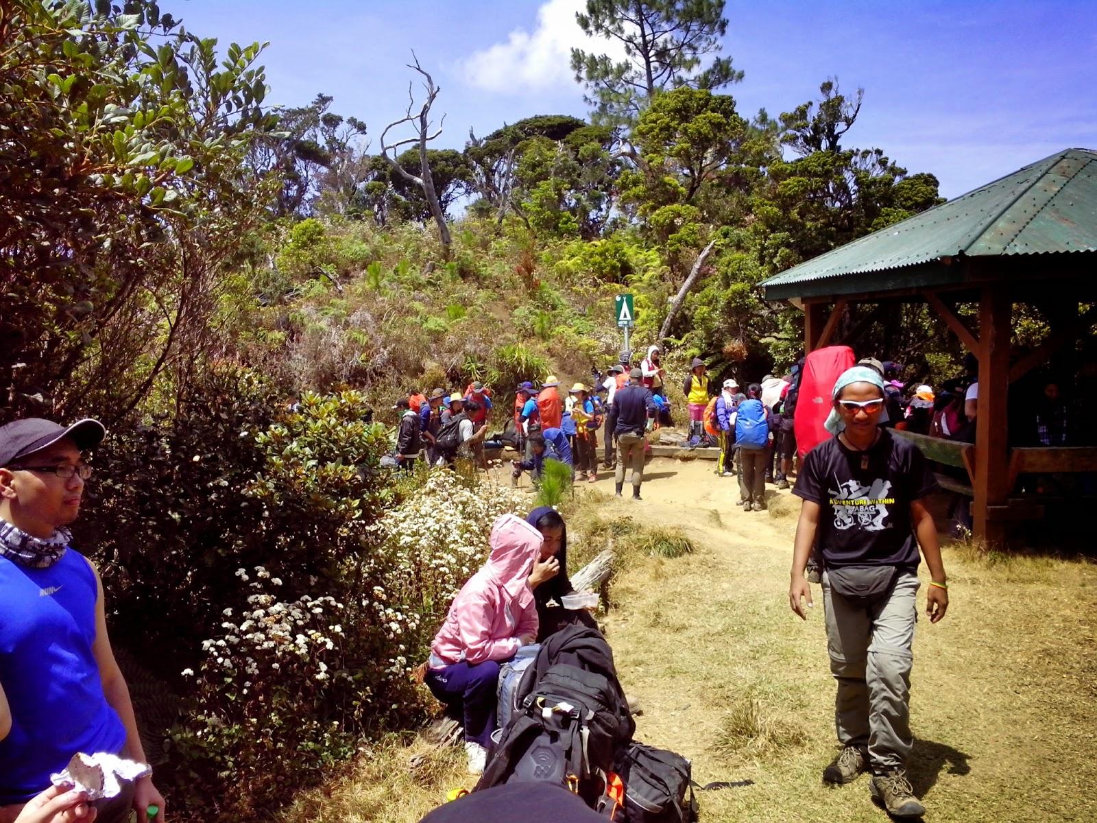 Camp 1 Mt. Pulag - Ambaneg Trail